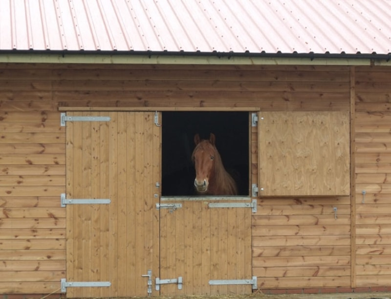 Effective stable ventilation and stable design